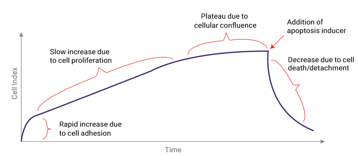 Schematic representation of the Cell Index