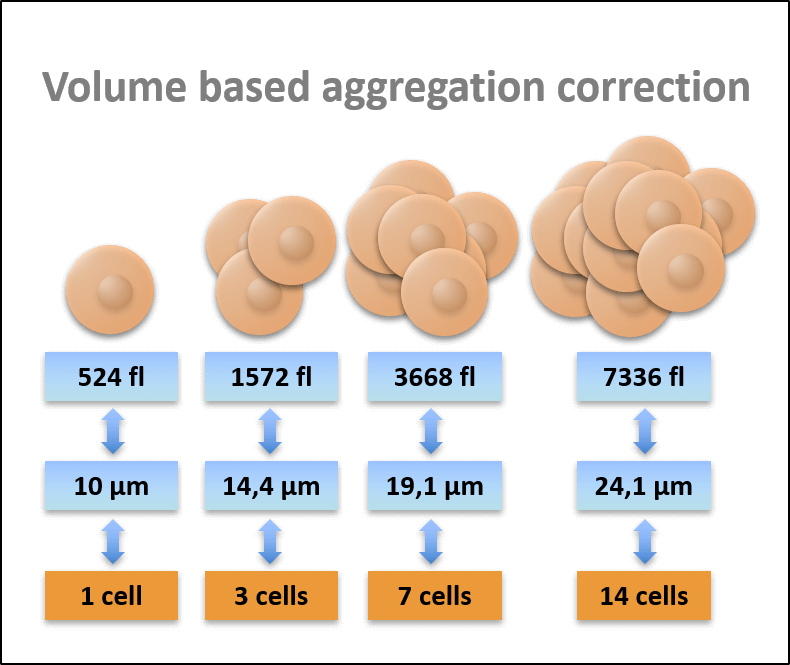 Aggregation CASY Cell Counter