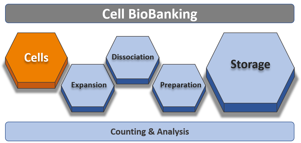 Cell BioBanking Solutions