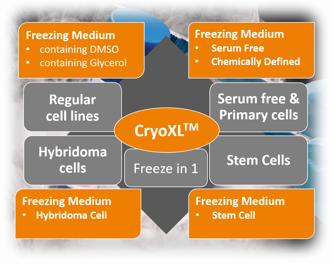 CryoXL Overview