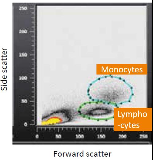Lymphocyte Separation Media Flow