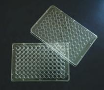 Sterile Tissue Culture Multiwell Plates